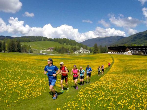 Seiser Alm Trailrunning-Laufurlaub – mit RUNNING Company durch die Blumenwiese