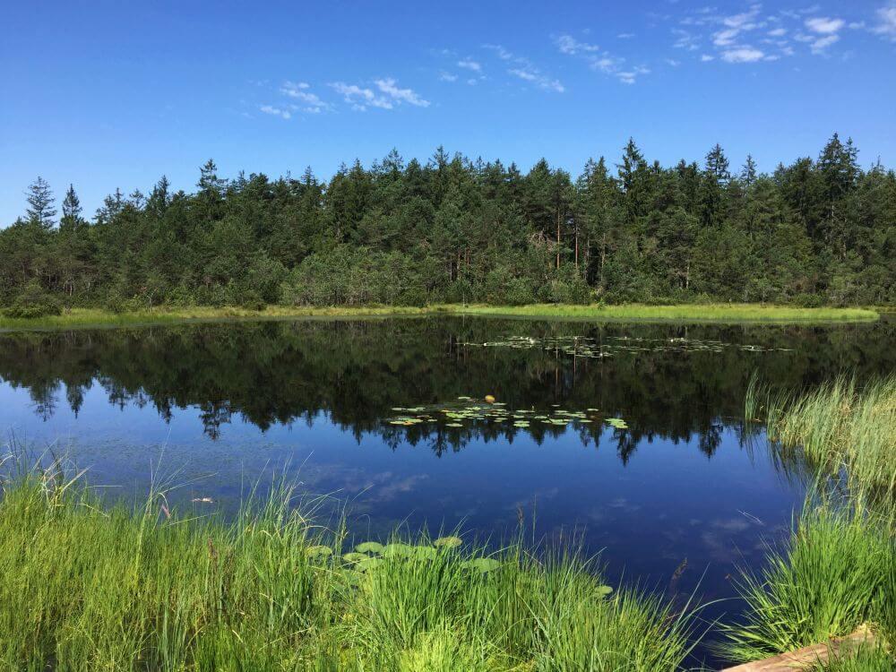 Grundloser See Nähe Gstadt
