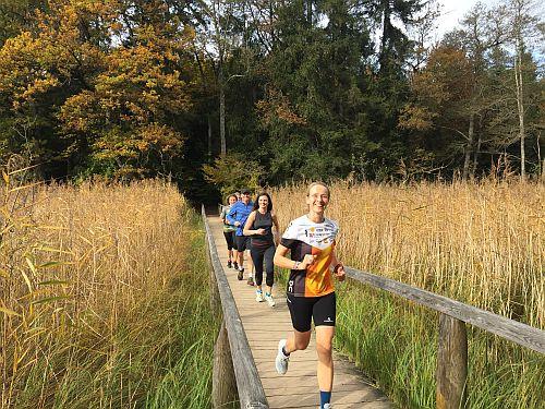 Laufen durchs Schilff an der Eggstätter Seenplatte